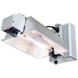 Kits et systèmes hydroponiques élèvent la lumière