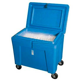 Polar Chest Dry Ice Storage Containers