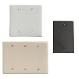 Bryant® Nylon Blank Box & Strap Mount Wall Plates