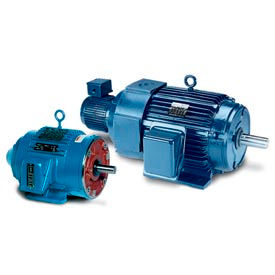 Leeson Speedmaster Vector Duty Motors 3 Phase, Totally Enclosed, Rigid