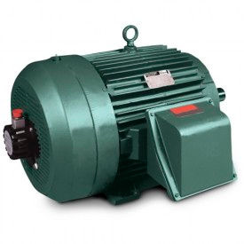 Baldor-Reliance Inverter/Vector Motors