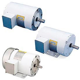 Leeson Washguard White Epoxy Motors, 1 & 3 Phase