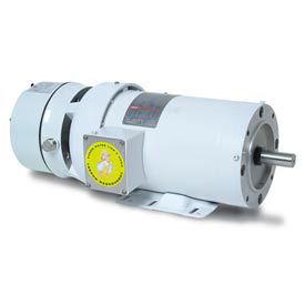Leeson Washguard époxy blanc frein moteur 3PH