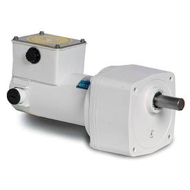 Leeson Parallel Shaft DC Washguard® Gearmotors