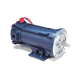 Leeson DC Motors, Explosion Proof