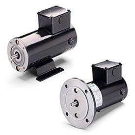 Leeson DC Motors, Metric Frame, IP54