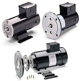 Leeson DC Motors, Metric (IEC) Frame, IP54, Low Voltage (24V)