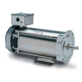 Leeson DC Motors, Washdown, Stainless Steel