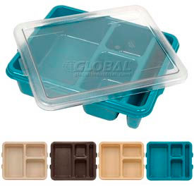 Meal Delivery Trays
