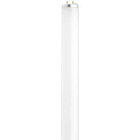 T12 Linear Fluorescent Lamps