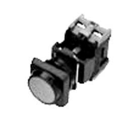 ACI 22mm Pilot Lights