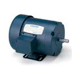 Leeson Standard Efficiency 50 Hz General Purpose Motors, 3-Phase, TEFC