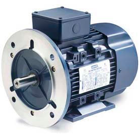 3-Ph IEC Metric Motors