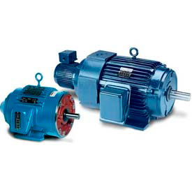 3-Phase Inverter Duty Motors