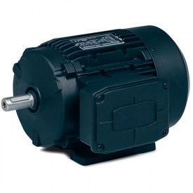 Baldor 3-Ph Metric Motors