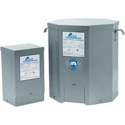 Acme T181048 Lighting Transformers 1 PH, 60 Hz 120 X 240 Volt Input 12/24 Volt Output, 0.1 KVA