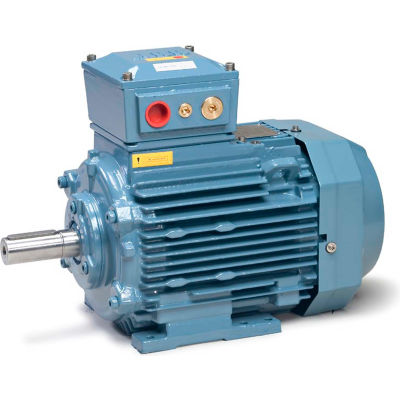 Baldor-Reliance Metric IEC Motor, Flameproof, MM18224-EX3,3PH,400/690V,1500RPM,22/30 KW/HP,50HZ,D180