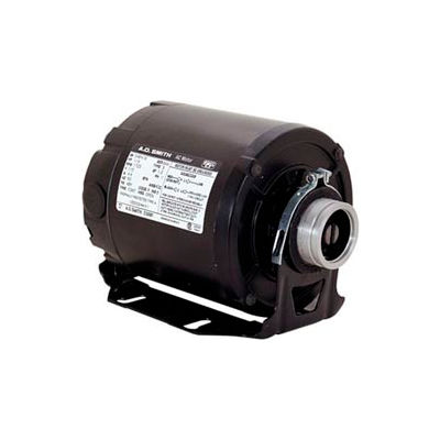 Century CB2034AD, Carbonator Pump Motor 115/230 Volts 1725 RPM 1/3 HP