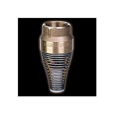 """1"""" FNPT No-Lead Brass Foot Valve with Buna-S Rubber Poppet"""